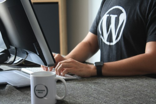 Setting up a WordPress website: 5 things you should do after installing WordPress
