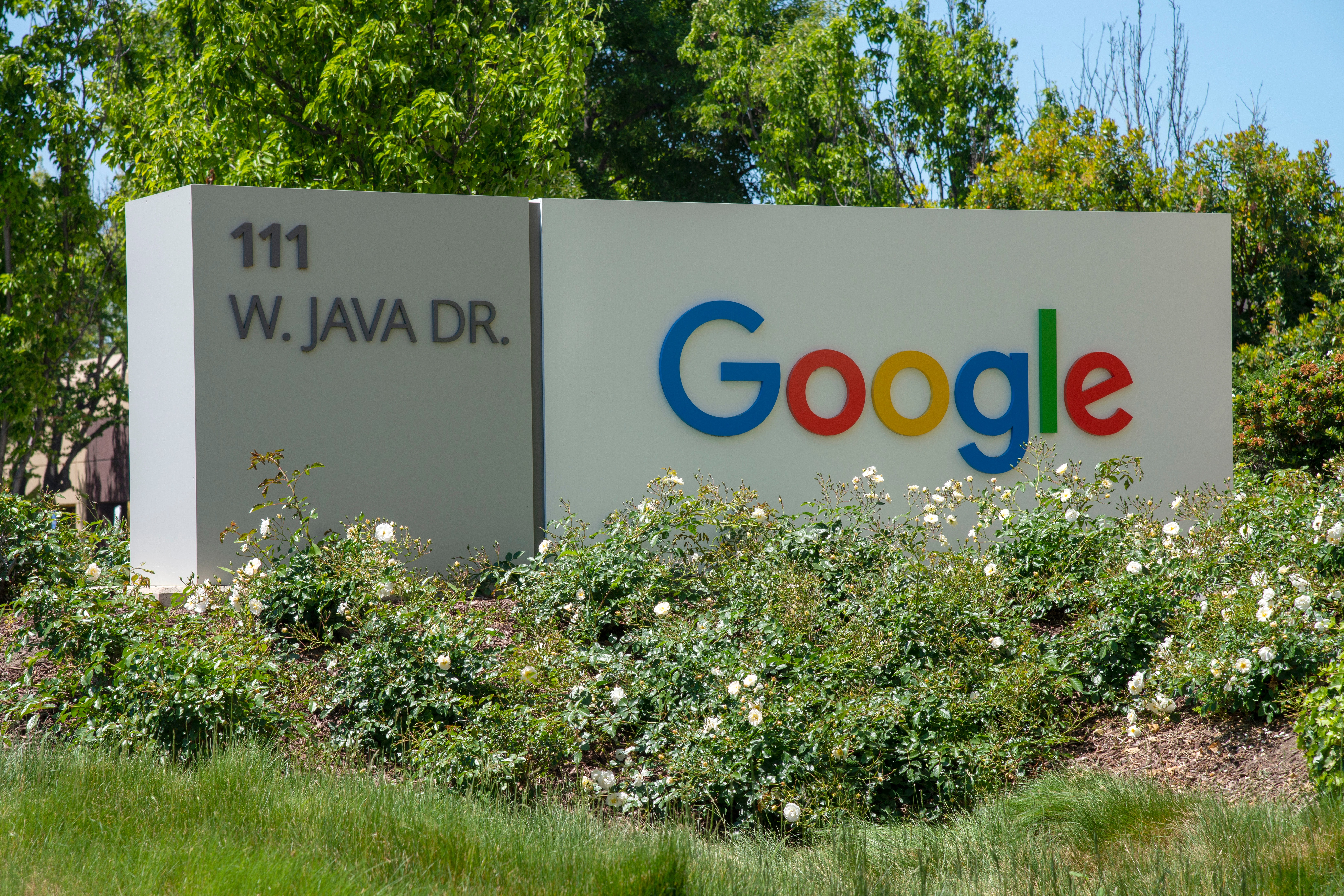 Google highlights ways it removes websites from the search index